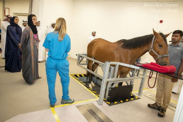 HH Sheikha Moza officially opens Equine Veterinary Medical Center